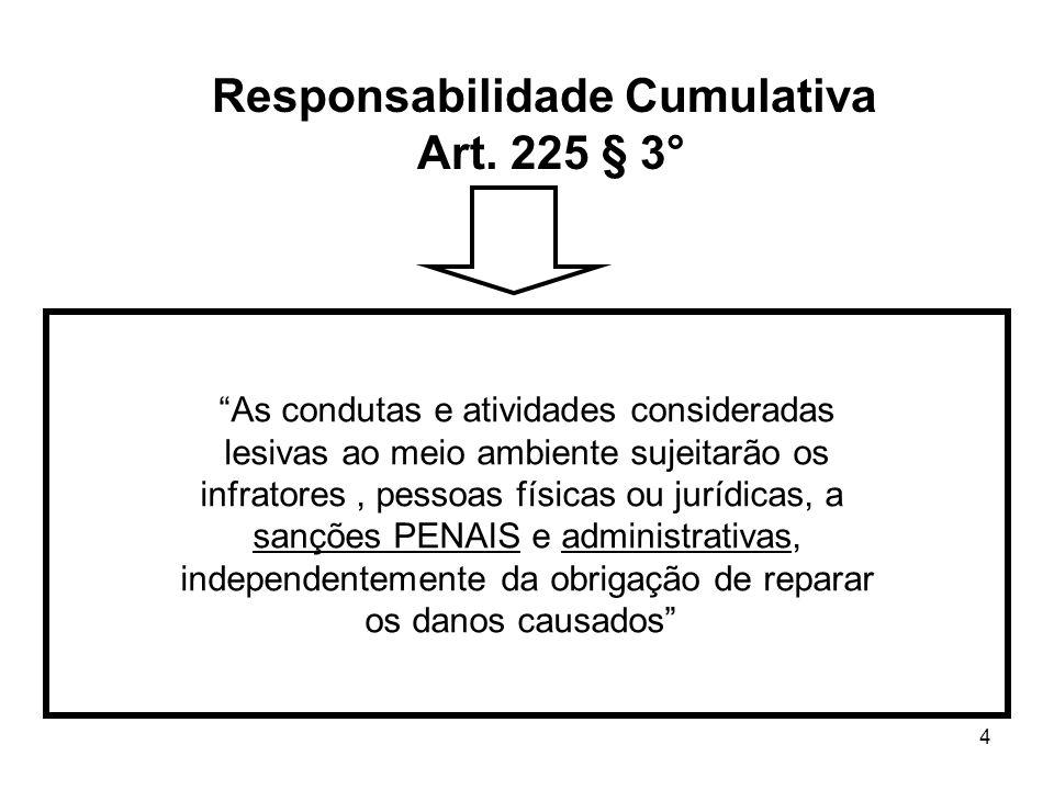 4 Responsabilidade Cumulativa Art. 225 § 3° As condutas e atividades consideradas lesivas ao meio ambiente sujeitarão os infratores, pessoas físicas o