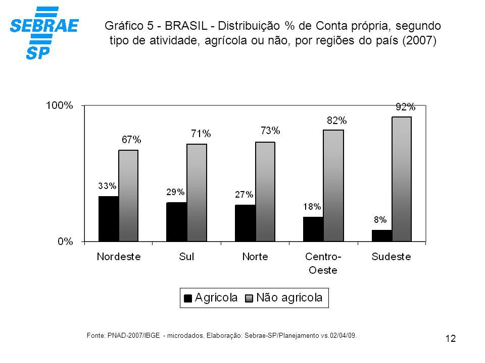 12 Gráfico 5 - BRASIL - Distribuição % de Conta própria, segundo tipo de atividade, agrícola ou não, por regiões do país (2007) Fonte: PNAD-2007/IBGE