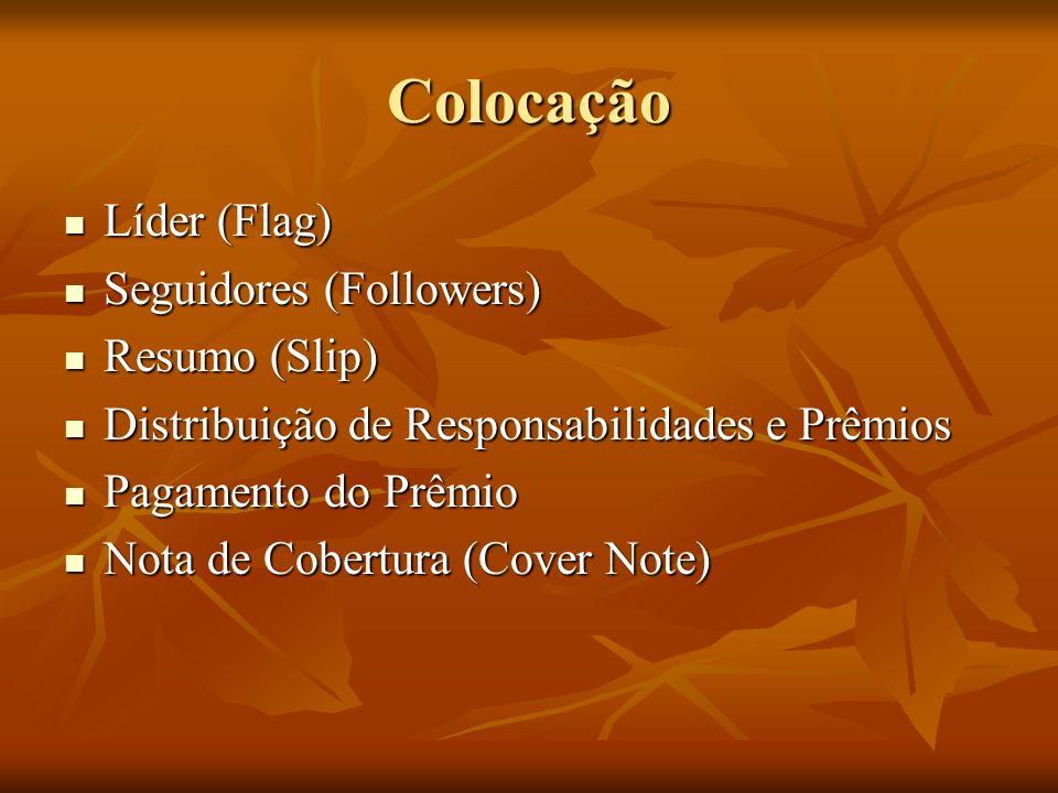 Colocação Líder (Flag) Líder (Flag) Seguidores (Followers) Seguidores (Followers) Resumo (Slip) Resumo (Slip) Distribuição de Responsabilidades e Prêmios Distribuição de Responsabilidades e Prêmios Pagamento do Prêmio Pagamento do Prêmio Nota de Cobertura (Cover Note) Nota de Cobertura (Cover Note)
