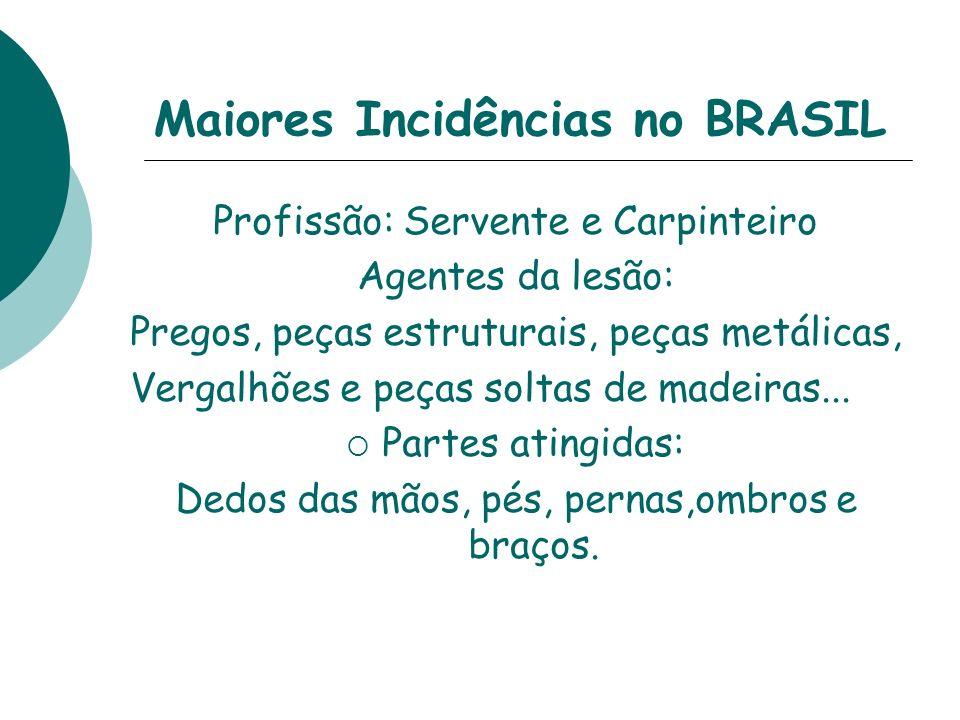 Maiores Incidências no BRASIL Profissão: Servente e Carpinteiro Agentes da lesão: Pregos, peças estruturais, peças metálicas, Vergalhões e peças solta