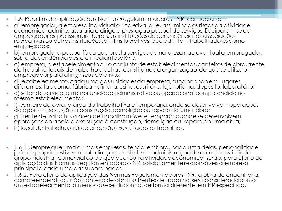 1.6. Para fins de aplicação das Normas Regulamentadoras – NR, considera-se: a) empregador, a empresa individual ou coletiva, que, assumindo os riscos