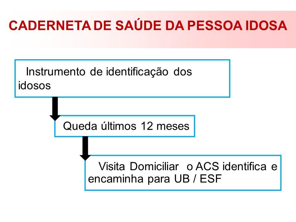CADERNETA DE SAÚDE DA PESSOA IDOSA Instrumento de identificação dos idosos Queda últimos 12 meses Visita Domiciliar o ACS identifica e encaminha para