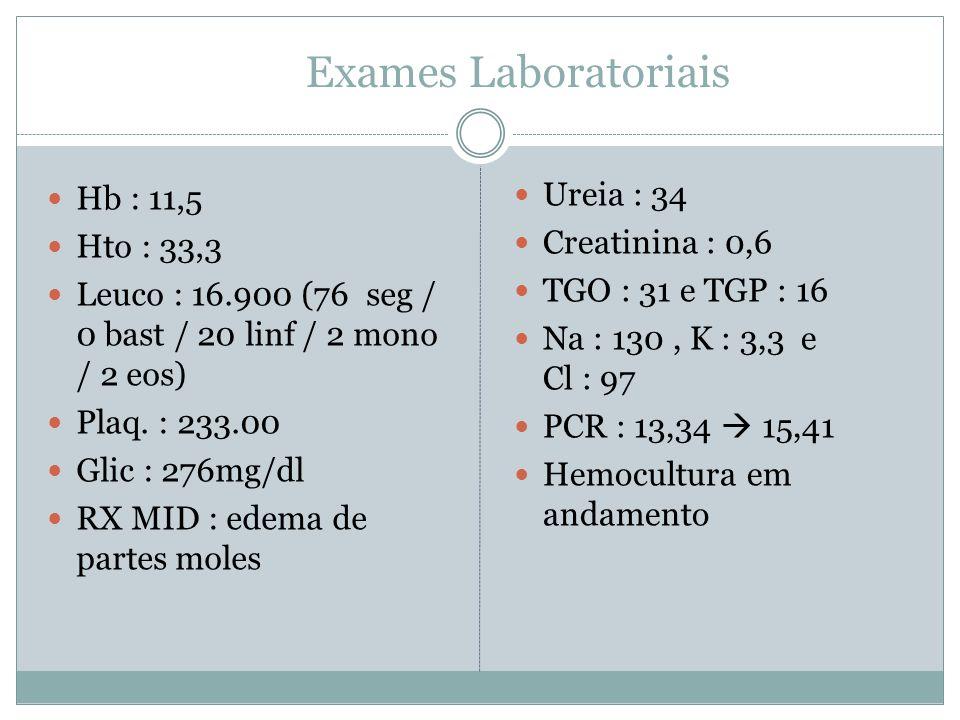 Exames Laboratoriais Hb : 11,5 Hto : 33,3 Leuco : 16.900 (76 seg / 0 bast / 20 linf / 2 mono / 2 eos) Plaq.