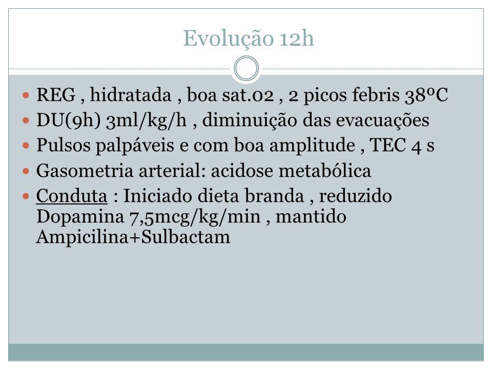 Evolução 12h REG, hidratada, boa sat.02, 2 picos febris 38ºC DU(9h) 3ml/kg/h, diminuição das evacuações Pulsos palpáveis e com boa amplitude, TEC 4 s Gasometria arterial: acidose metabólica Conduta : Iniciado dieta branda, reduzido Dopamina 7,5mcg/kg/min, mantido Ampicilina+Sulbactam