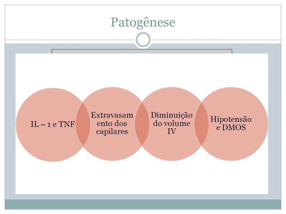 Patogênese IL – 1 e TNF Extravasam ento dos capilares Diminuição do volume IV Hipotensão e DMOS