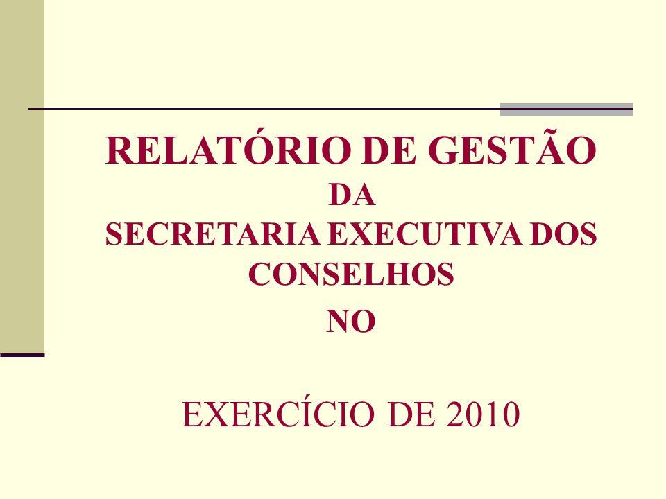 RELATÓRIO DE GESTÃO DA SECRETARIA EXECUTIVA DOS CONSELHOS NO EXERCÍCIO DE 2010