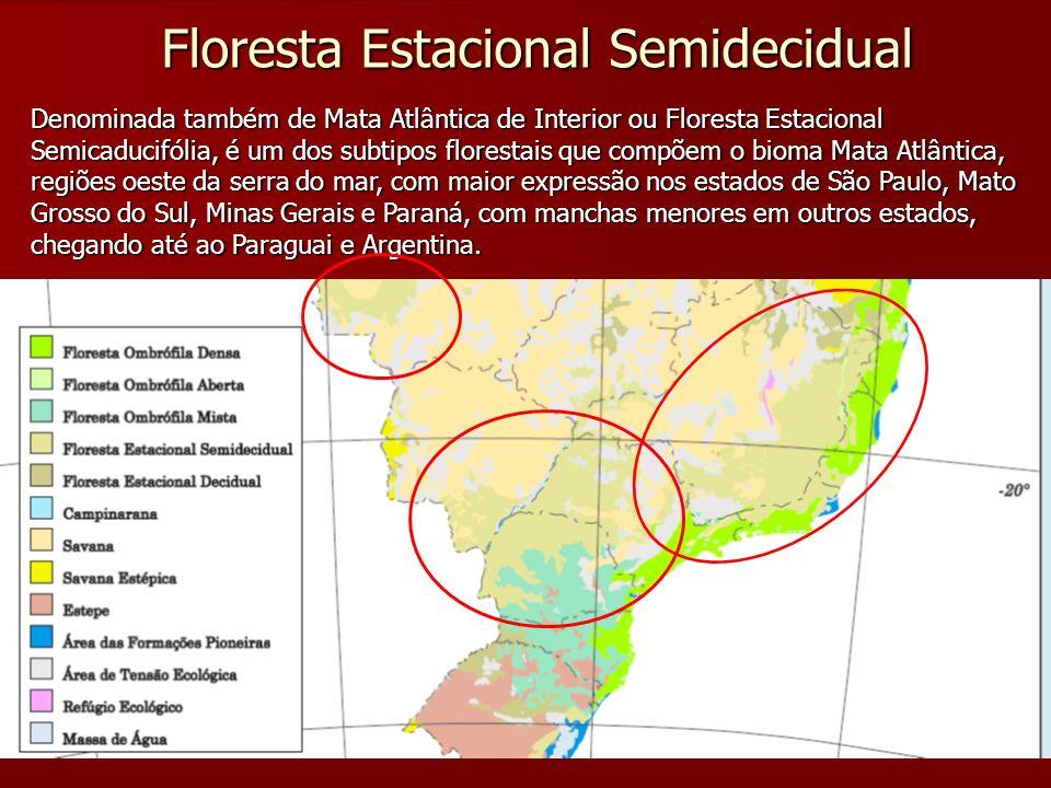 Floresta Estacional Semidecidual Denominada também de Mata Atlântica de Interior ou Floresta Estacional Semicaducifólia, é um dos subtipos florestais