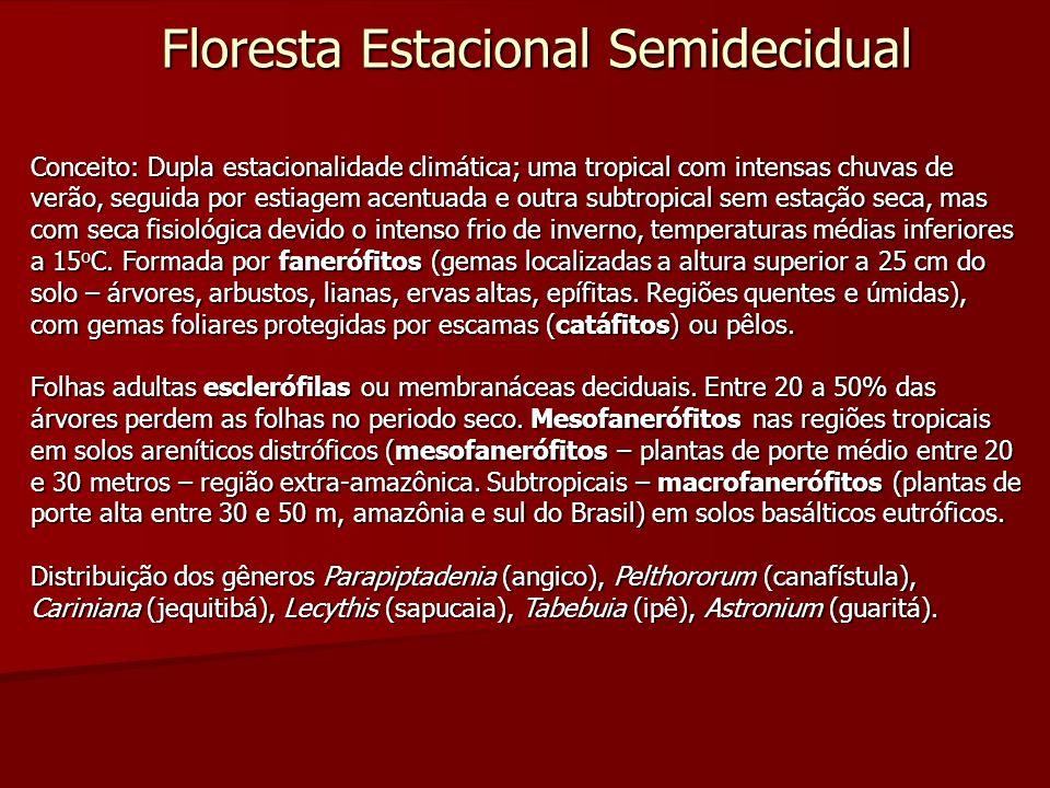 Floresta Estacional Semidecidual Conceito: Dupla estacionalidade climática; uma tropical com intensas chuvas de verão, seguida por estiagem acentuada