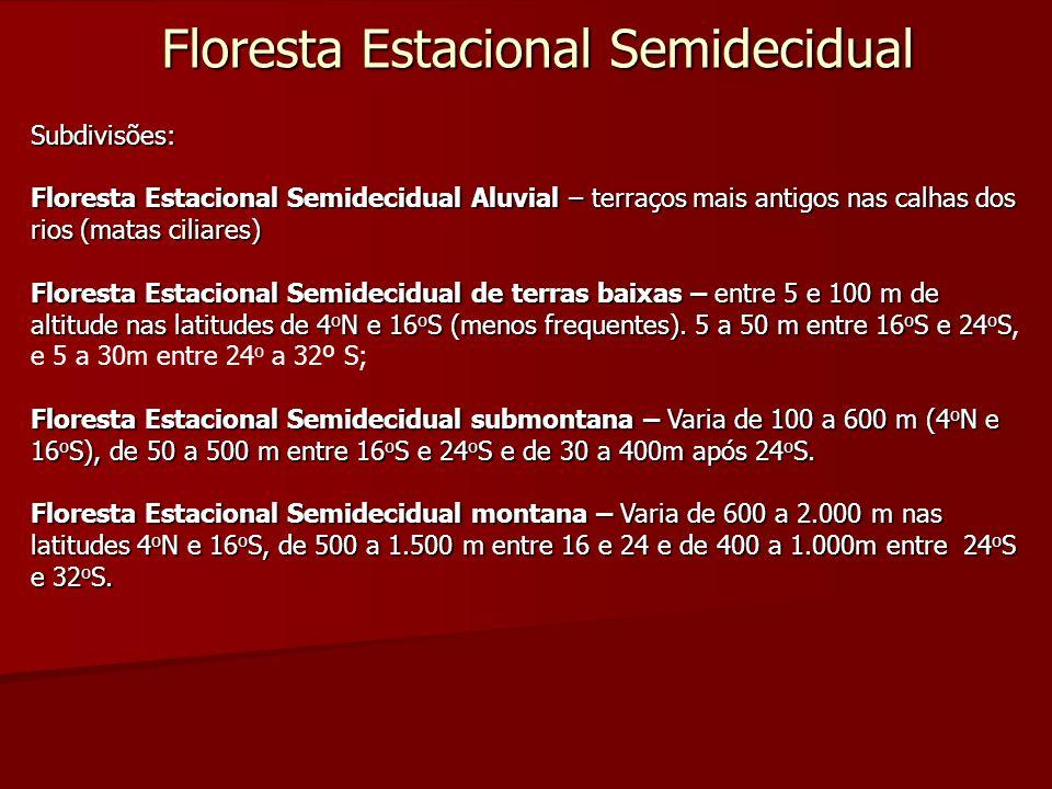 Floresta Estacional Semidecidual Subdivisões: Floresta Estacional Semidecidual Aluvial – terraços mais antigos nas calhas dos rios (matas ciliares) Fl