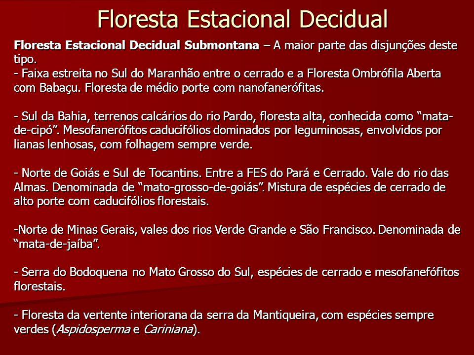 Floresta Estacional Decidual Floresta Estacional Decidual Submontana – A maior parte das disjunções deste tipo. - Faixa estreita no Sul do Maranhão en