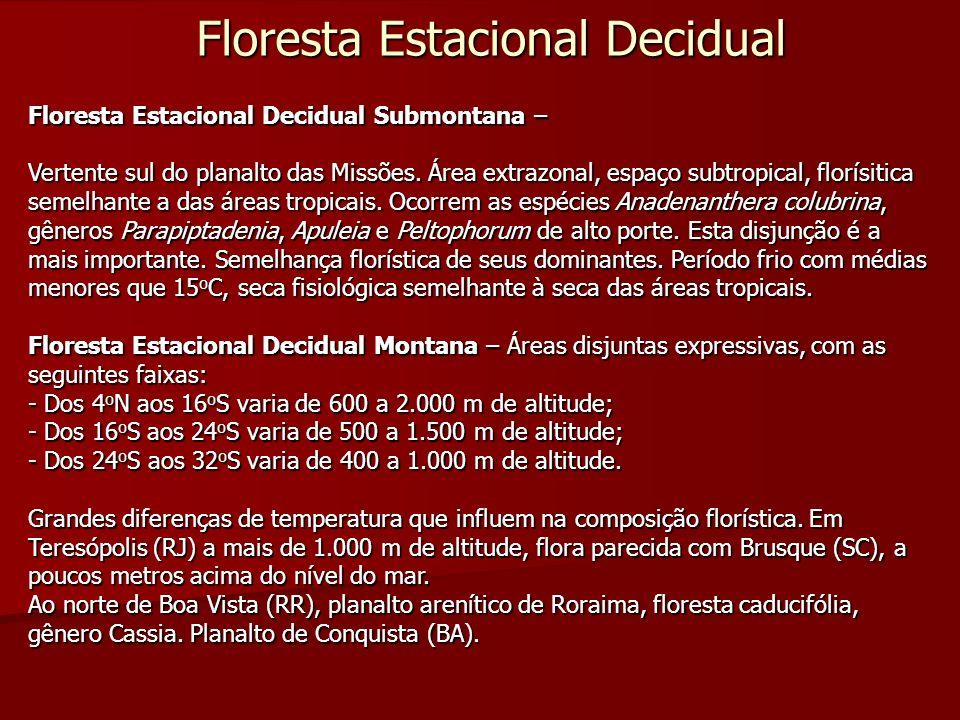 Floresta Estacional Decidual Floresta Estacional Decidual Submontana – Vertente sul do planalto das Missões. Área extrazonal, espaço subtropical, flor