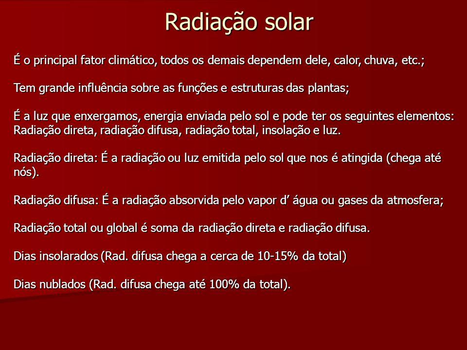 Radiação solar É o principal fator climático, todos os demais dependem dele, calor, chuva, etc.; Tem grande influência sobre as funções e estruturas d
