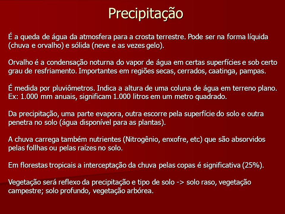 Floresta Estacional Semidecidual Floresta Estacional Semidecidual Aluvial - grande depressão pantaneira do Mato Grosso do Sul.