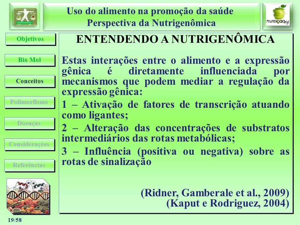 Uso do alimento na promoção da saúde Perspectiva da Nutrigenômica Uso do alimento na promoção da saúde Perspectiva da Nutrigenômica 19/58 ENTENDENDO A
