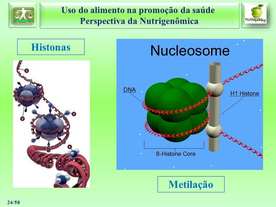 Uso do alimento na promoção da saúde Perspectiva da Nutrigenômica Uso do alimento na promoção da saúde Perspectiva da Nutrigenômica 24/58 Histonas Met