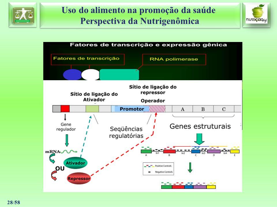 Uso do alimento na promoção da saúde Perspectiva da Nutrigenômica Uso do alimento na promoção da saúde Perspectiva da Nutrigenômica 28/58
