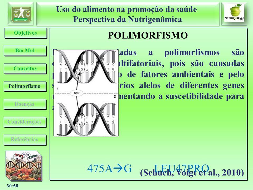 Uso do alimento na promoção da saúde Perspectiva da Nutrigenômica Uso do alimento na promoção da saúde Perspectiva da Nutrigenômica 30/58 POLIMORFISMO