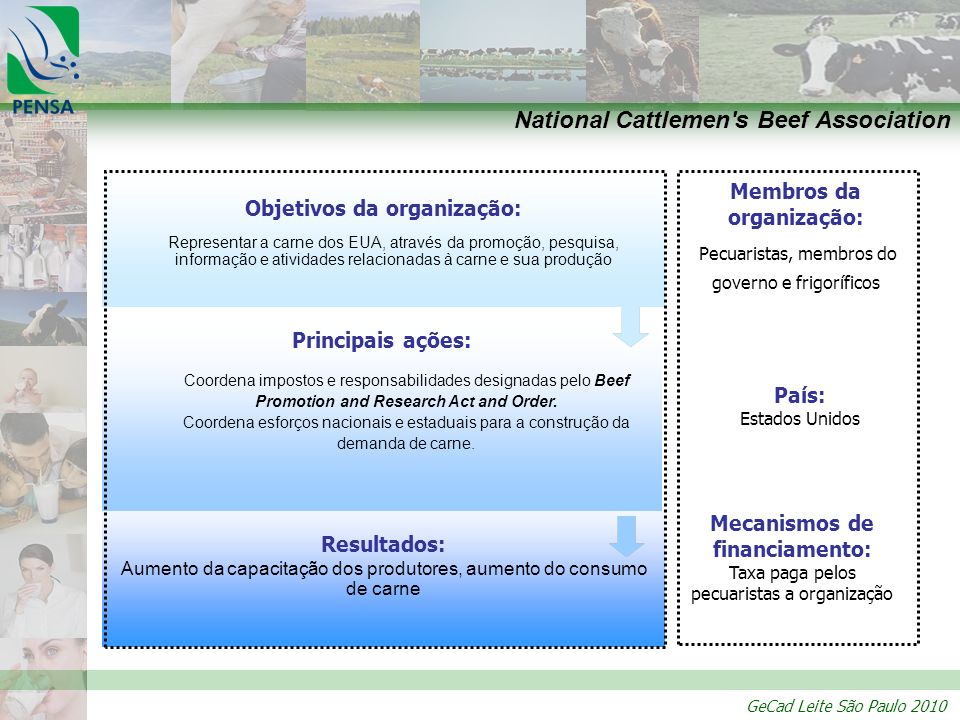 GeCad Leite São Paulo 2010 Resultados: Aumento da capacitação dos produtores, aumento do consumo de carne Principais ações: Coordena impostos e respon