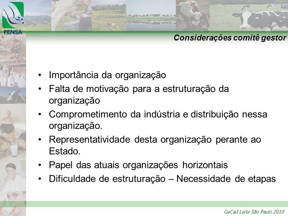 GeCad Leite São Paulo 2010 Considerações comitê gestor Importância da organização Falta de motivação para a estruturação da organização Comprometiment