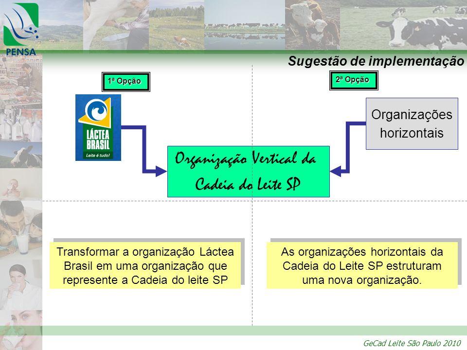GeCad Leite São Paulo 2010 Sugestão de implementação Organizações horizontais Organização Vertical da Cadeia do Leite SP 1ª Opção 2ª Opção Transformar
