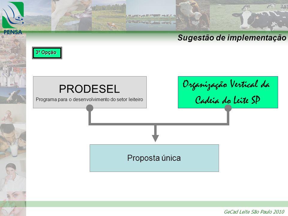 GeCad Leite São Paulo 2010 Sugestão de implementação PRODESEL Programa para o desenvolvimento do setor leiteiro Organização Vertical da Cadeia do Leit