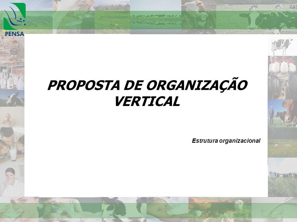 PROPOSTA DE ORGANIZAÇÃO VERTICAL Estrutura organizacional
