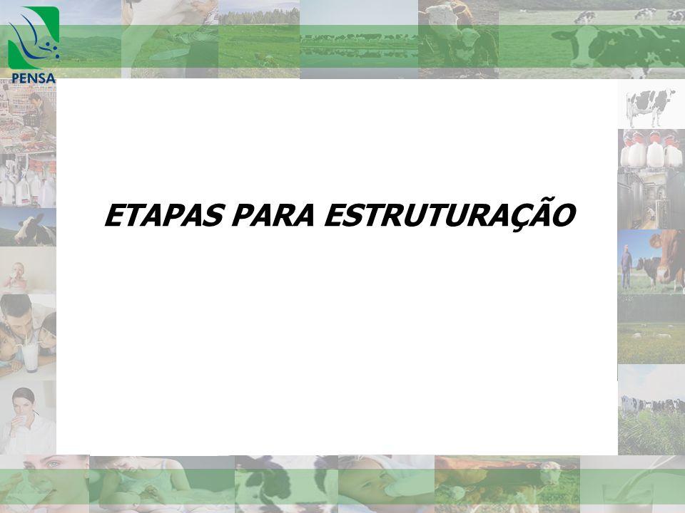 ETAPAS PARA ESTRUTURAÇÃO