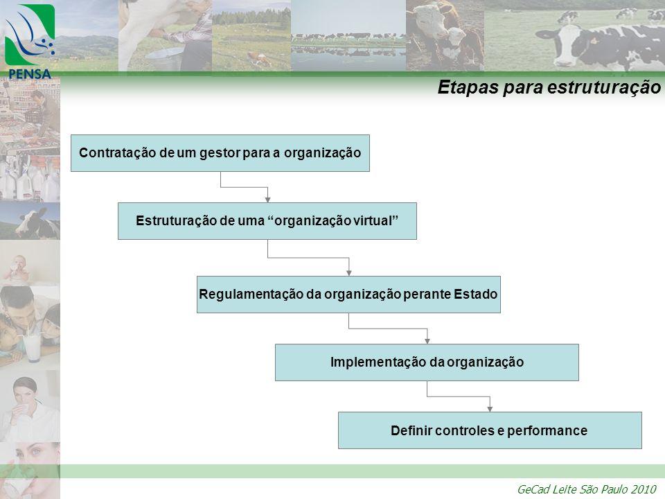 GeCad Leite São Paulo 2010 Etapas para estruturação Estruturação de uma organização virtual Contratação de um gestor para a organização Regulamentação