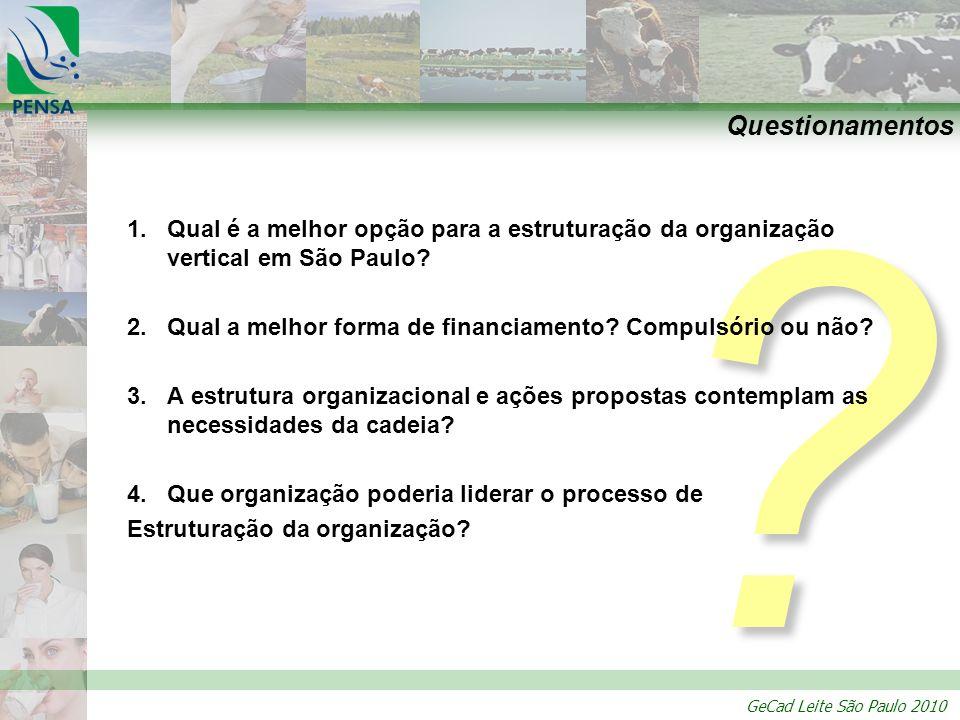 GeCad Leite São Paulo 2010 ? Questionamentos 1.Qual é a melhor opção para a estruturação da organização vertical em São Paulo? 2.Qual a melhor forma d