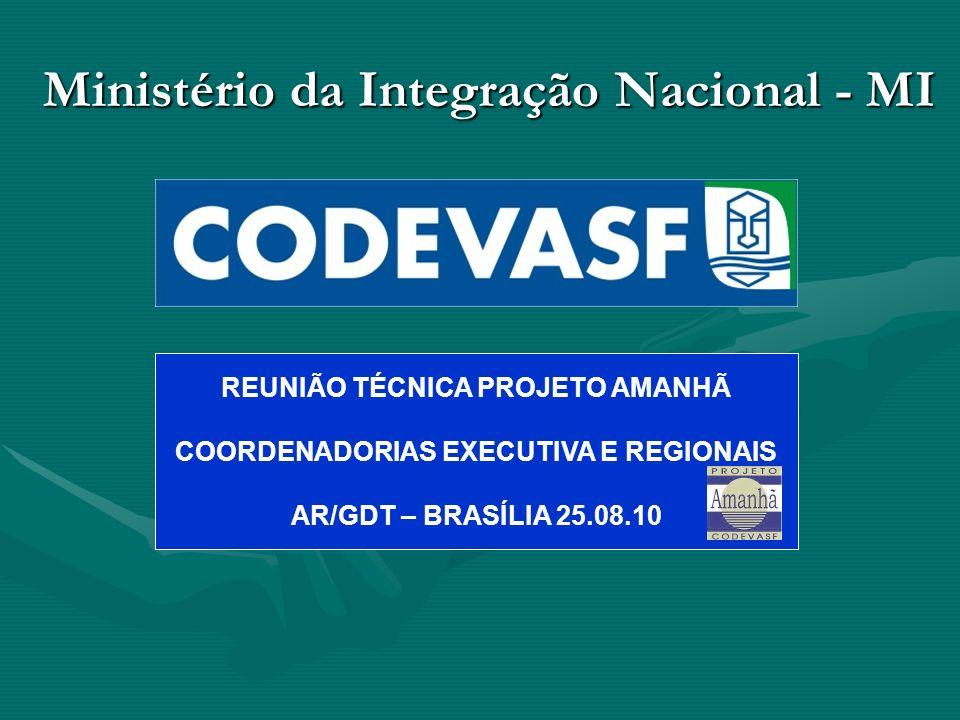 Ministério da Integração Nacional - MI REUNIÃO TÉCNICA PROJETO AMANHÃ COORDENADORIAS EXECUTIVA E REGIONAIS AR/GDT – BRASÍLIA 25.08.10