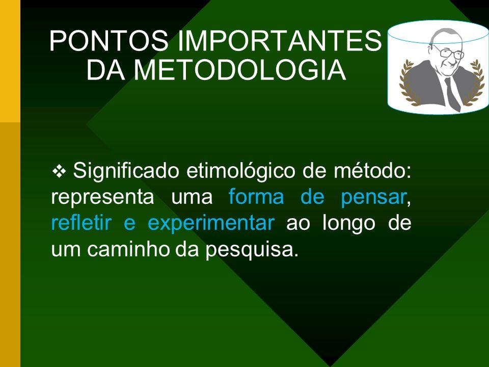 PONTOS IMPORTANTES DA METODOLOGIA Estabelecer a fase exploratória, critérios de amostragem e definição de instrumentos e procedimentos para síntese e