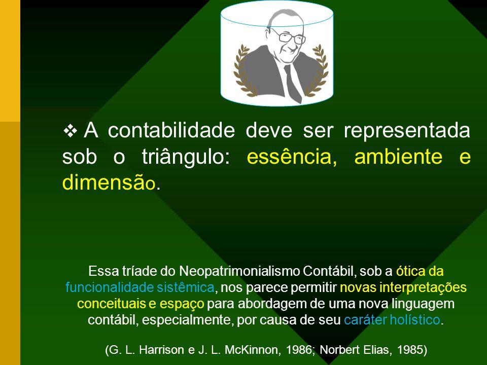 CONCLUSÕES CIENTISTA CONTÁBIL BRASILEIRO. CIENTISTA CONTÁBIL BRASILEIRO