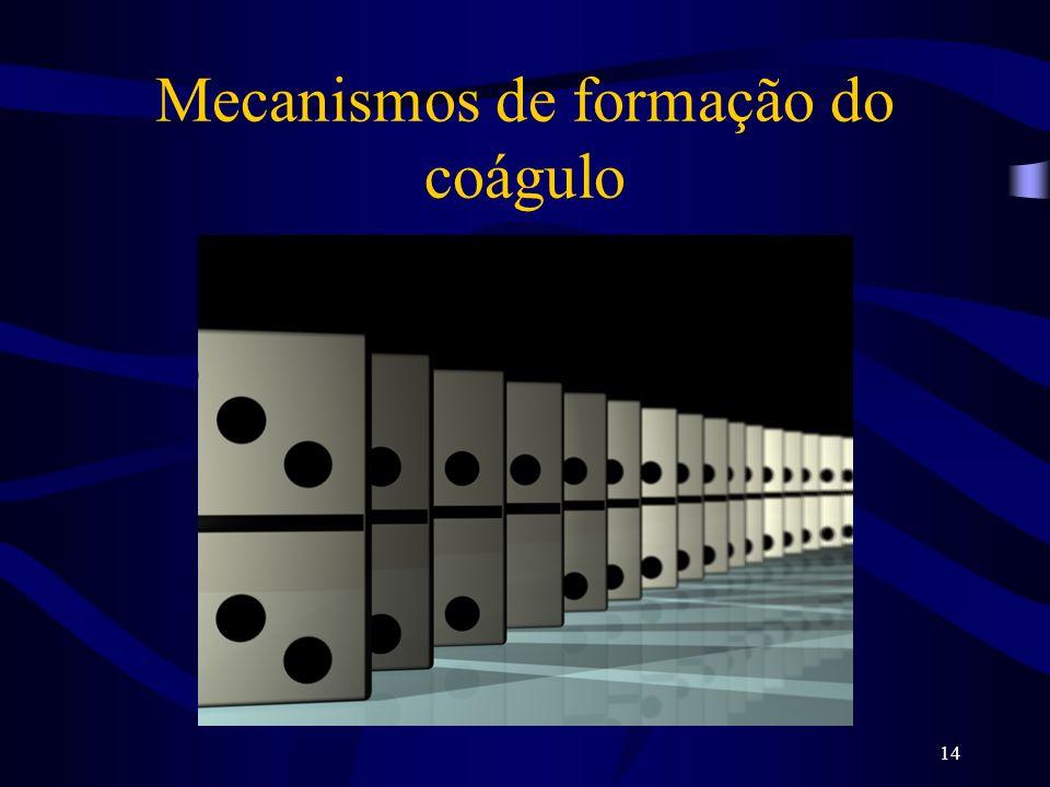 14 Mecanismos de formação do coágulo