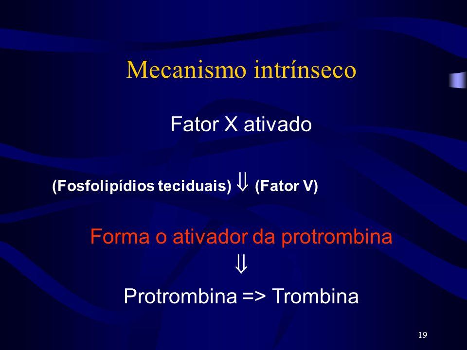 19 Mecanismo intrínseco Fator X ativado (Fosfolipídios teciduais) (Fator V) Forma o ativador da protrombina Protrombina => Trombina