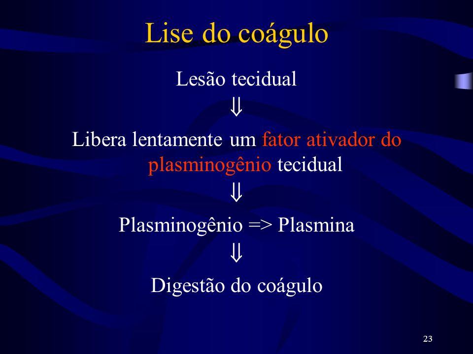 23 Lise do coágulo Lesão tecidual Libera lentamente um fator ativador do plasminogênio tecidual Plasminogênio => Plasmina Digestão do coágulo