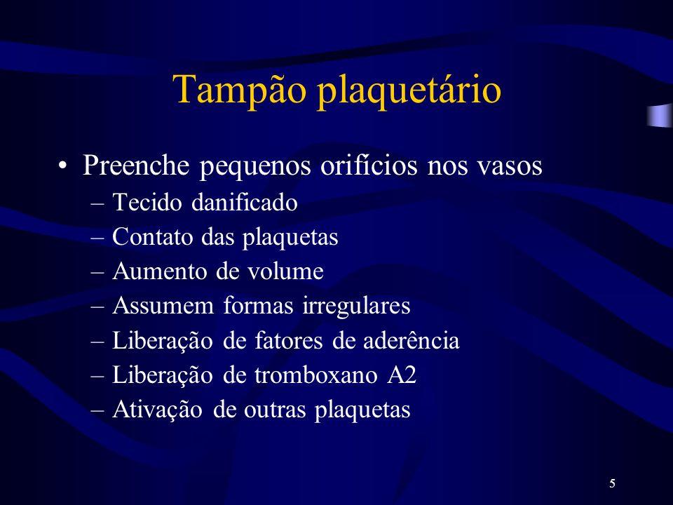 5 Tampão plaquetário Preenche pequenos orifícios nos vasos –Tecido danificado –Contato das plaquetas –Aumento de volume –Assumem formas irregulares –L