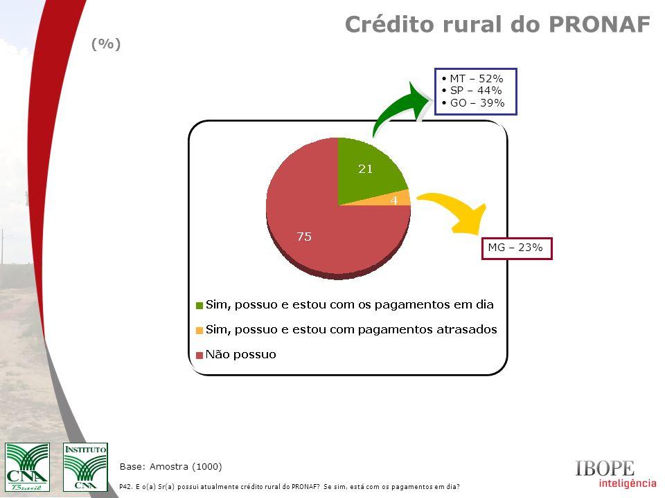P42. E o(a) Sr(a) possui atualmente crédito rural do PRONAF? Se sim, está com os pagamentos em dia? Base: Amostra (1000) Crédito rural do PRONAF (%) M