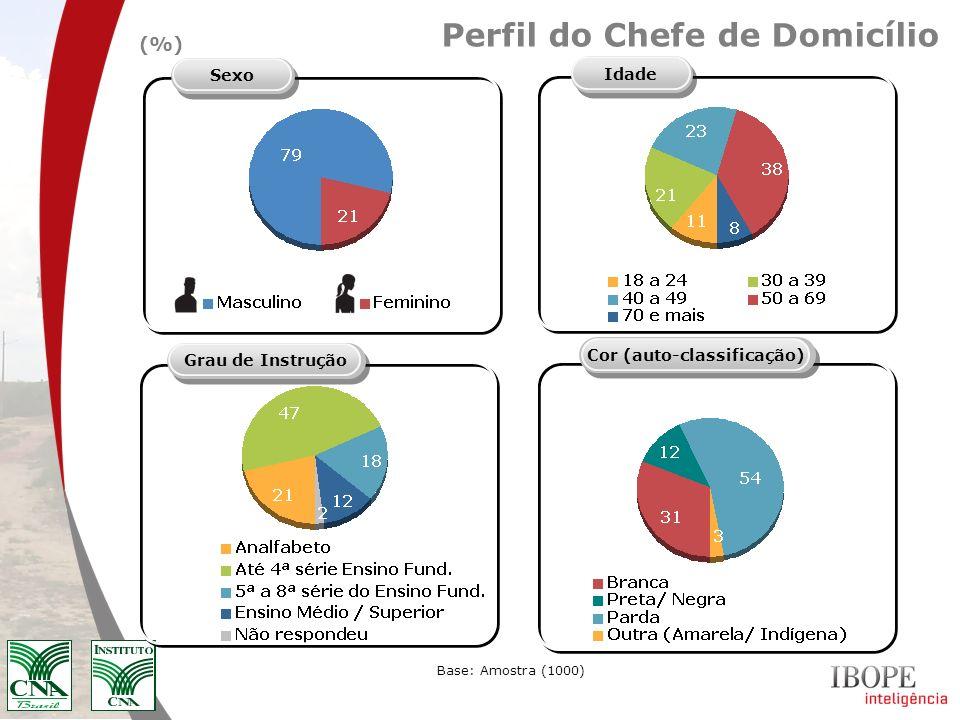 Perfil do Chefe de Domicílio Idade SexoGrau de Instrução Base: Amostra (1000) (%) Cor (auto-classificação)
