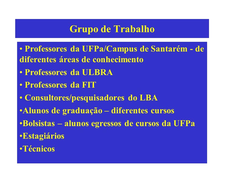 Grupo de Trabalho Professores da UFPa/Campus de Santarém - de diferentes áreas de conhecimento Professores da ULBRA Professores da FIT Consultores/pes