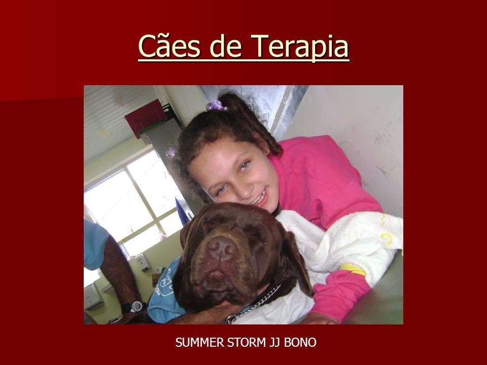 Cães de Terapia SUMMER STORM JJ BONO