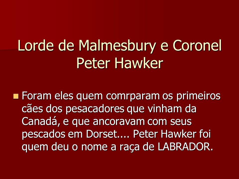 Lorde de Malmesbury e Coronel Peter Hawker Foram eles quem comrparam os primeiros cães dos pesacadores que vinham da Canadá, e que ancoravam com seus