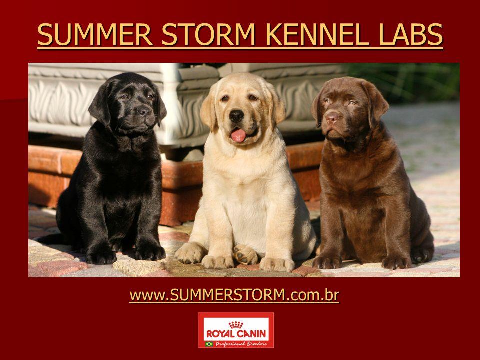 www.SUMMERSTORM.com.br SUMMER STORM KENNEL LABS