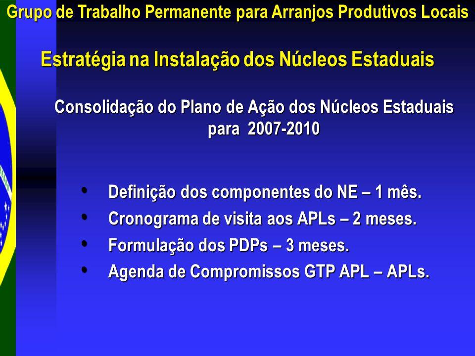 Consolidação do Plano de Ação dos Núcleos Estaduais para 2007-2010 Definição dos componentes do NE – 1 mês. Definição dos componentes do NE – 1 mês. C