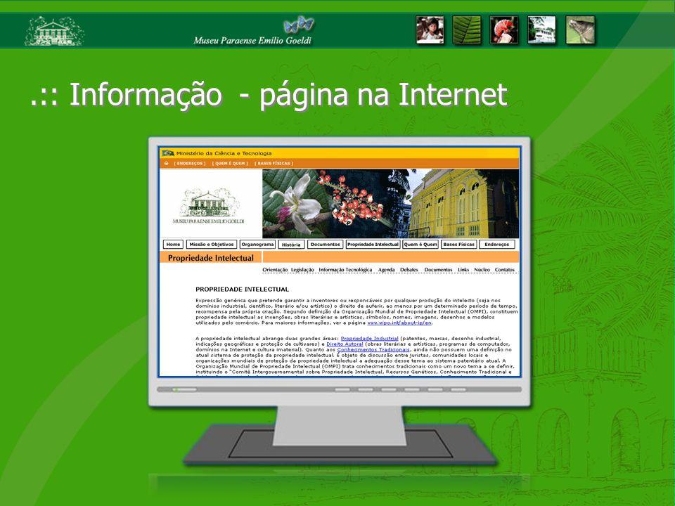 .:: Informação - página na Internet