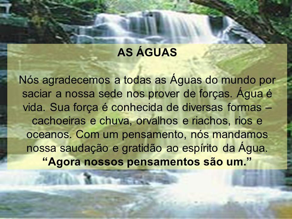 AS ÁGUAS Nós agradecemos a todas as Águas do mundo por saciar a nossa sede nos prover de forças. Água é vida. Sua força é conhecida de diversas formas