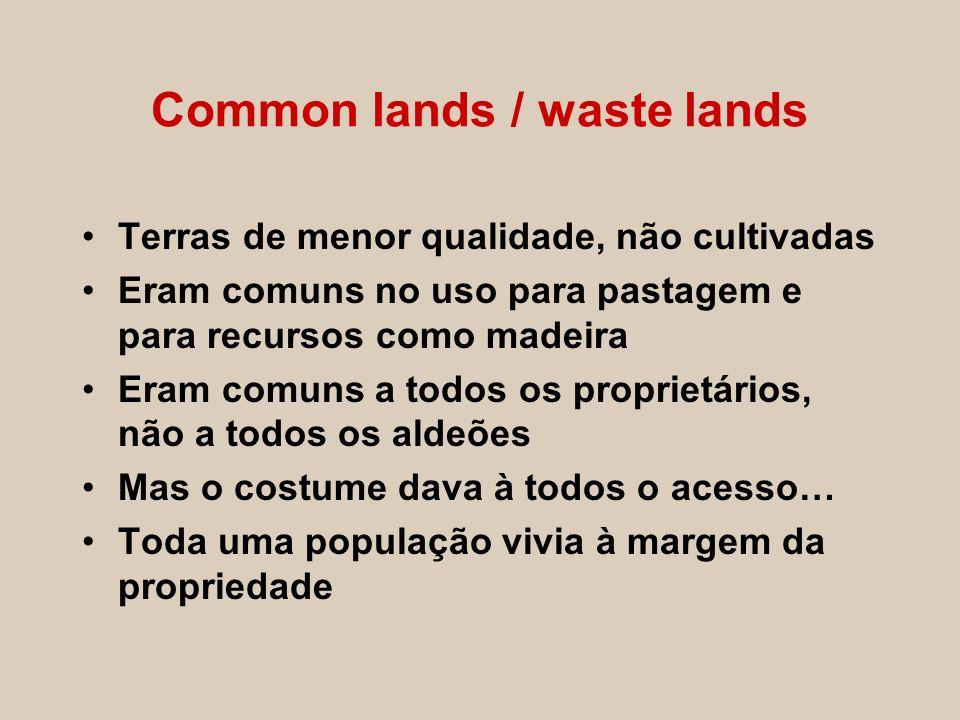 Common lands / waste lands Terras de menor qualidade, não cultivadas Eram comuns no uso para pastagem e para recursos como madeira Eram comuns a todos