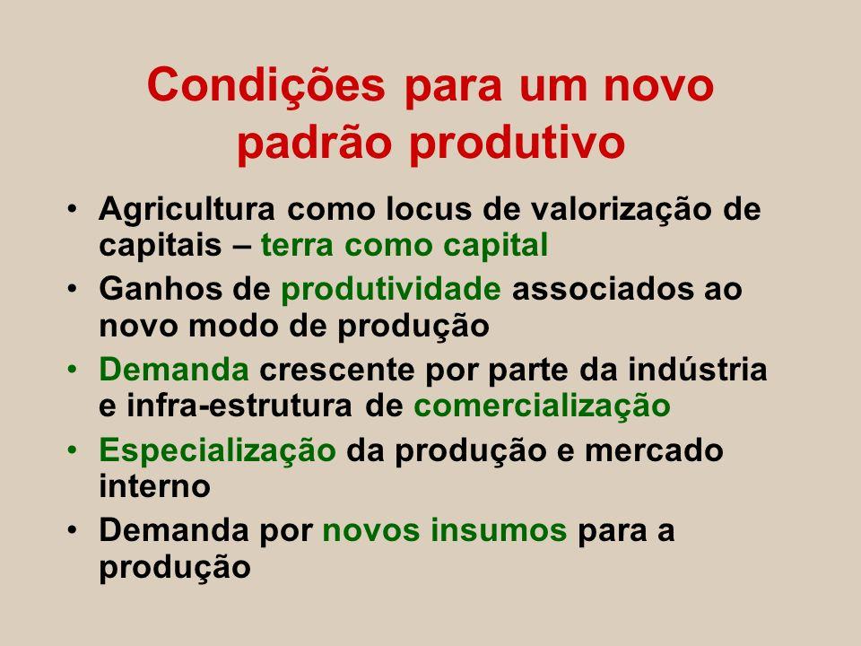 Condições para um novo padrão produtivo Agricultura como locus de valorização de capitais – terra como capital Ganhos de produtividade associados ao n