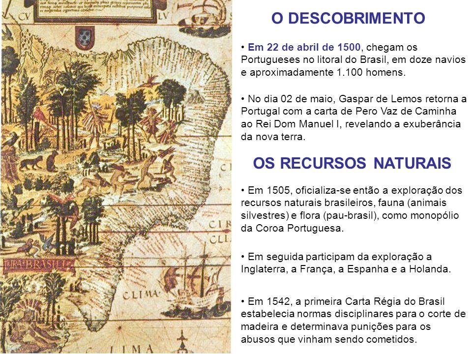 Em 22 de abril de 1500, chegam os Portugueses no litoral do Brasil, em doze navios e aproximadamente 1.100 homens. No dia 02 de maio, Gaspar de Lemos