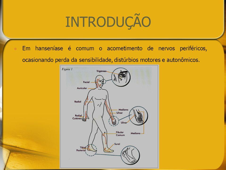 INTRODUÇÃO Ressecamento da pele, insensibilidade, perda da força muscular...trauma