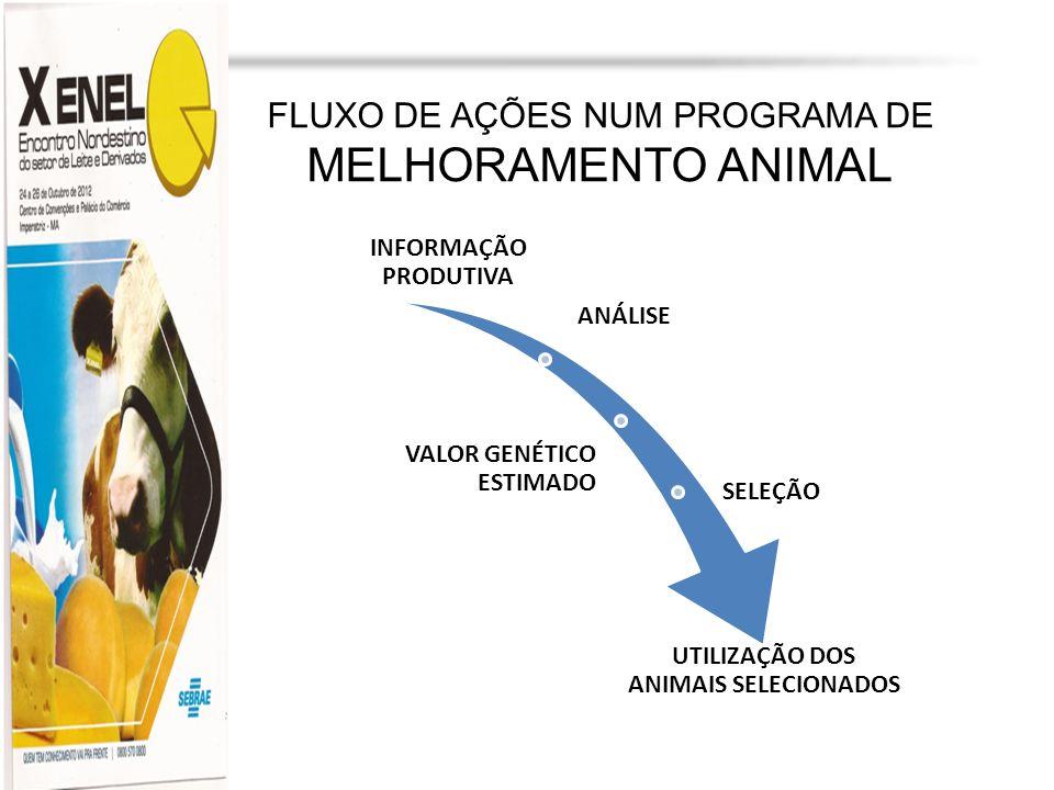 Profa. Dra. Marília Martins cljm@uol.com.br FLUXO DE AÇÕES NUM PROGRAMA DE MELHORAMENTO ANIMAL INFORMAÇÃO PRODUTIVA ANÁLISE VALOR GENÉTICO ESTIMADO SE
